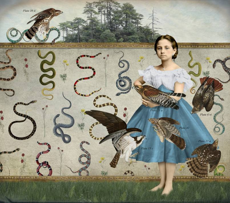 Girl's Guide to Snakes and Birds - Corinne Geertsen